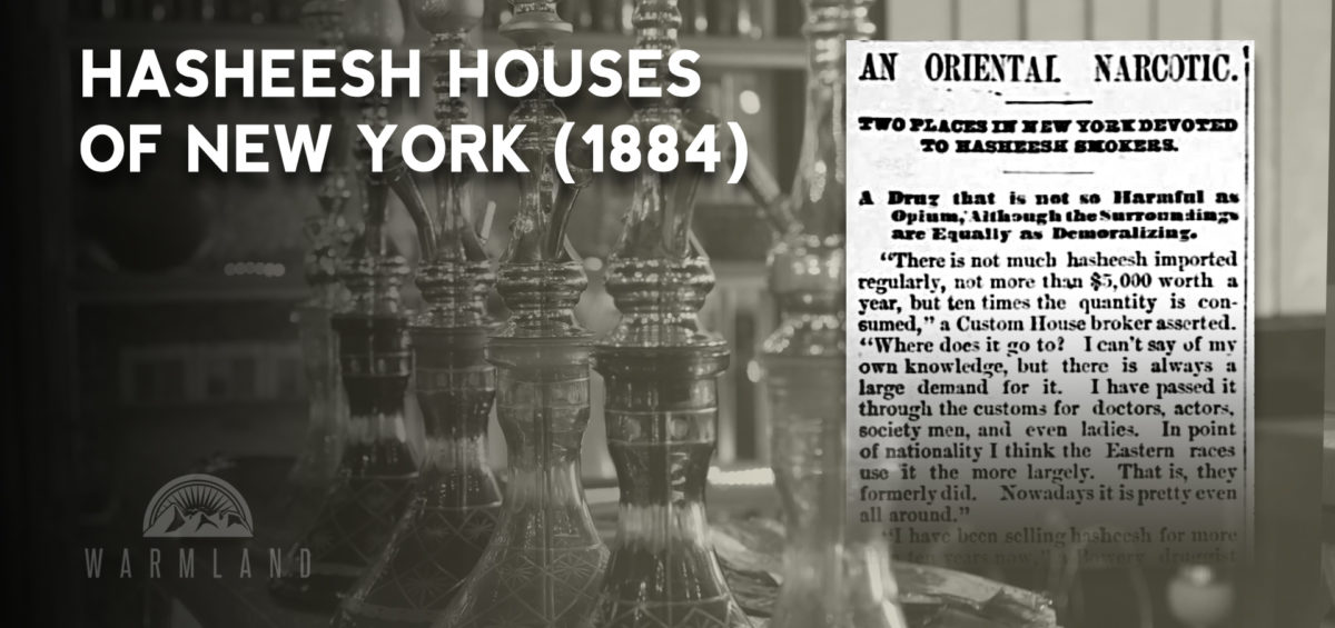 new-york-hasheesh-houses-1894
