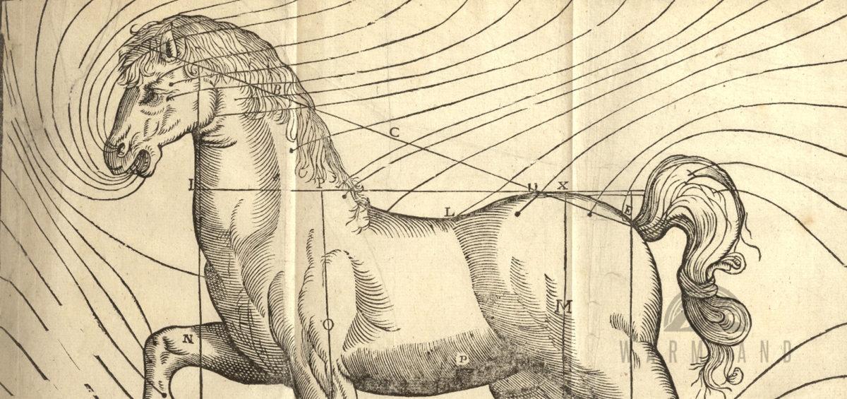 1851-hashish-horse-veterinary-medicine-operation