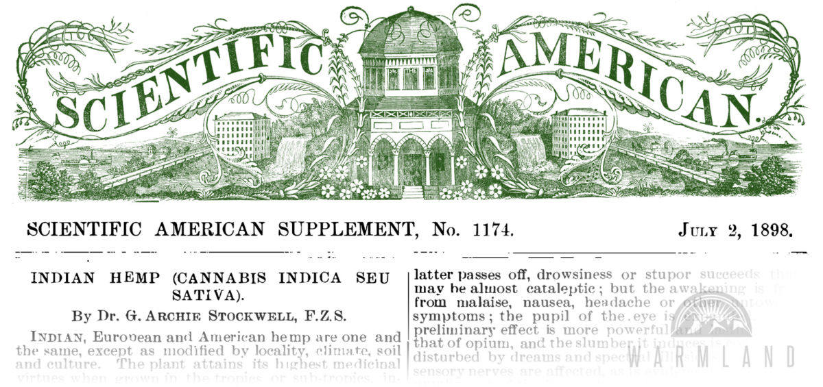 1898-scientific-american-cannabis-indica-stockwell