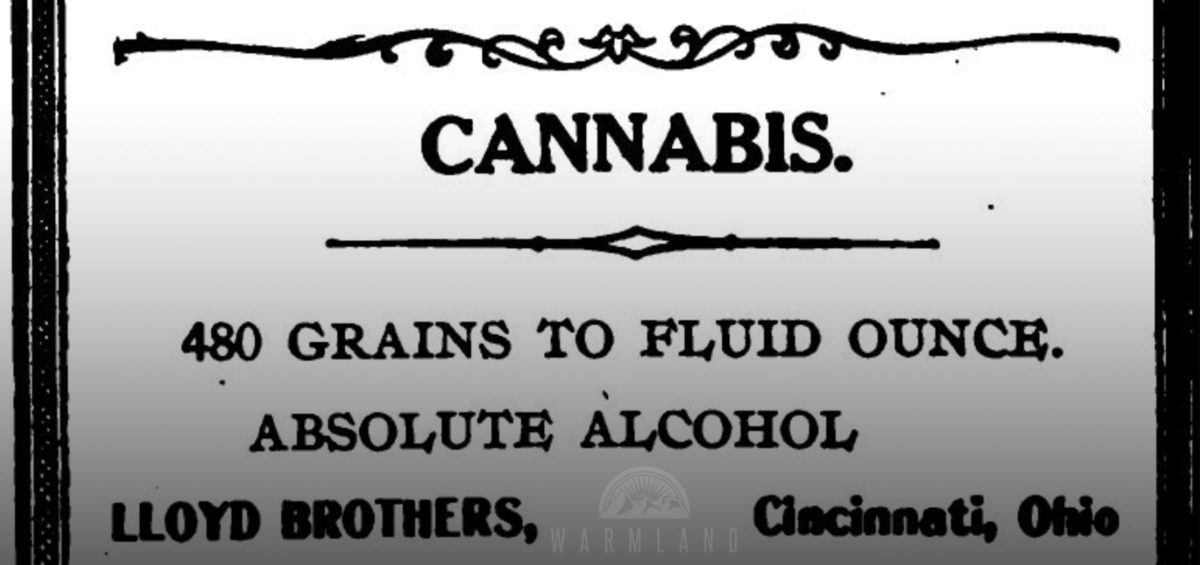 1907-lloyd-brothers-cannabis-dose-book-stomach-cancer