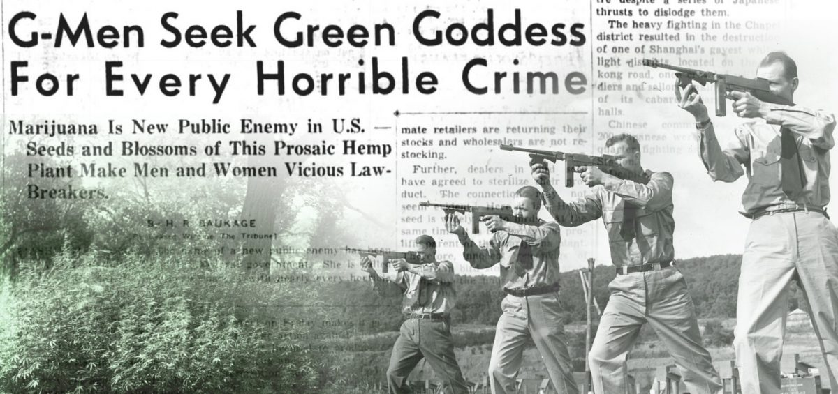 gmen-seek-green-goddess-hemp